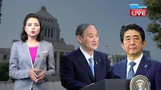 फिर Japan के प्रधानमंत्री बनेंगे Shinzo Abe ! राजनीति में फिर सक्रिय हुए Shinzo Abe | #DBLIVE