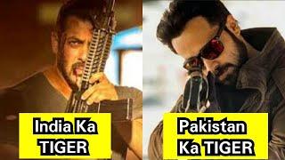 India Ka Tiger Vs Pakistan Ka Tiger, Kaun Kise Harayega Tiger 3 Mein, Salman Vs Emraan