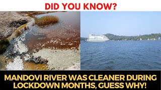 #DidYouKnow? Mandovi river was cleaner during lockdown months, Guess Why!