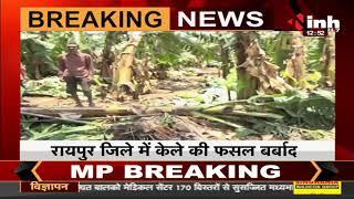 Chhattisgarh News    Raipur में किसानों पर बेमौसम बारिश की मार, तेज हवाओं से फसलें हुई बर्बाद