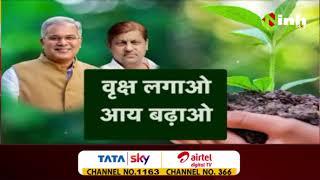 Chhattisgarh News || Bhupesh Baghel Government, वृक्ष लगाओ आय बढ़ाओ