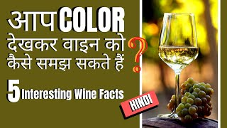 Top 5 Wine Facts   आसान तरीकों से समझे Wine को   How Can I Understand Wine by Watching Color?