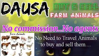 Dausa :- Buy & Sale Farm Animals ♧ Cow, Buffalo, Sheeps- घर बैठें गाय भैंस खरीदें बेचें..