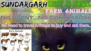 Sundargarh :- Buy & Sale Farm Animals ♧ Cow, Buffalo, Sheeps- घर बैठें गाय भैंस खरीदें बेचें..