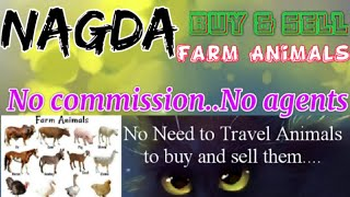 Nagda :- Buy & Sale Farm Animals ♧ Cow, Buffalo, Sheeps- घर बैठें गाय भैंस खरीदें बेचें..