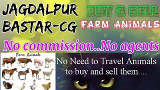 Jagdalpur Bastar :- Buy & Sale Farm Animals ♧ Cow घर बैठें गाय भैंस खरीदें बेचें..