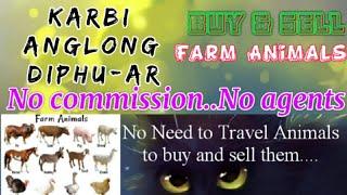 Karbi Anglong Diphu :- Buy & Sale Farm Animals ♧ Cows- घर बैठें गाय भैंस खरीदें बेचें..