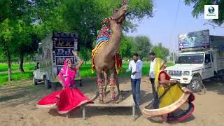 New Dj Rasiya   Main Titli Bagon Ki - मैं तितली बागों की   Latest Rajasthani Dj Song