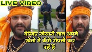 खेसारी लाल यादव अपने गॉव मे धान रोपते हुए - Khesari Lal Village Latest Update Video 2020