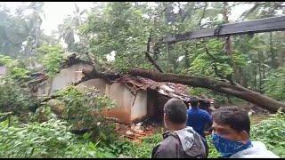 Massive tree falls on house at Khandola