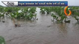 JETPUR જેતપુરના ગ્રામ્યપંથકમાં ભારે વરસાદથી ખેતરોમાં પાણી ફરી વળ્યા 20 06 2021