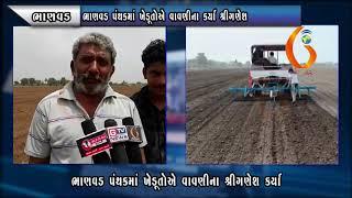 BHANVAD ભાણવડ પંથકમાં ખેડૂતોએ વાવણીના કર્યા શ્રીગણેશ 21 06 2021