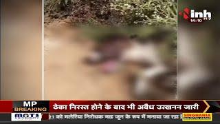 Madhya Pradesh News || Gwalior में चौकीदार ने डंडे से कुत्ते के पिल्ले की पिटाई, मौके पर मौत