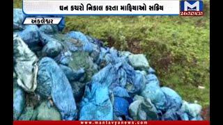 Ankleshwar: ઘન કચરાના નિકાલ કરતા માફિયા સક્રિય | Solid Waste