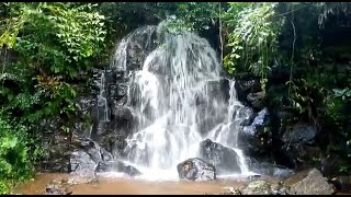 Did you know that there is a waterfall in Porvorim? No? Hurry before it gets crowded!