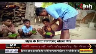 Chhattisgarh News || Bastar का देसी हेल्थ ड्रिंक मड़िया, Diabetes के मरीजों के लिए रामबाण दवाई