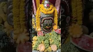 Mahakal live darshan