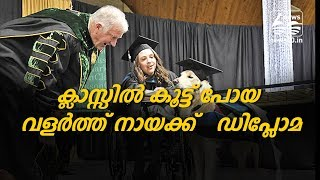 Dog gets Diploma: Clarkson University honoured service dog with honorary diploma in newyork america