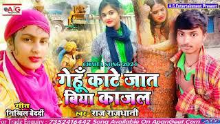 2021#Raj_Rajdhani सबसे बड़ा चईता सॉन्ग - गेहूं काटे जात बिया काजल - Gehu Kate Jat Biya Kajal