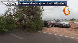 BAGVADAR પોરબંદર જામનગર હાઈવે પર ઘટાદાર વૃક્ષ ધરાશાયી થતા વાહનોની કતારો લાગી 18 07 2021