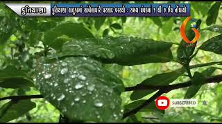 KUTIYANA કુતિયાણા તાલુકામાં સાંબેલાધારે વરસાદ વરસ્યો  સમગ્ર પંથકમાં ૧ થી ૭ ઈંચ નોંધાયો 25 07 2021