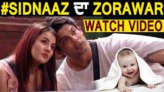 Bigg Boss 13 : SidNaaz ਦੇ ਬੇਟੇ Zorawar ਦਾ ਹੋਇਆ ਜਨਮ | Dainik Savera