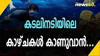 കടലിനടിയിലെ കാഴ്ചകൾ കാണുവാൻ...|Places For Snorkeling In India