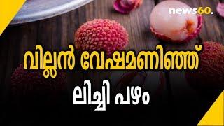 വില്ലൻ വേഷമണിഞ്ഞ് ലിച്ചി പഴം | Lichi Fruit In A Villainous Role
