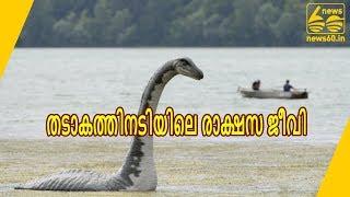 തടാകത്തിനടിയിലെ രാക്ഷസ ജീവി     News60 ML
