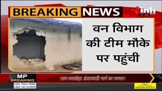 Chhattisgarh News || Surajpur, वन परिक्षेत्र प्रतापपुर में हाथियों का आतंक जारी