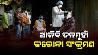 Today covid report of odisha#headlinesodisha.
