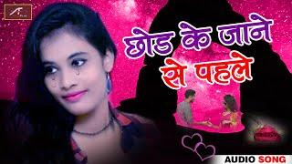 Hindi Sad Songs - प्यार में बेवफाई का सबसे दर्द भरा गीत - Chhod Ke Jane Se Pehle - FULL Audio - Mp3