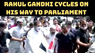 Watch: Rahul Gandhi Cycles On His Way To Parliament  | Catch News