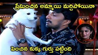 పెంచిన కుక్క గుర్తు పట్టింది | Kiccha Sudeep Telugu Movie Scenes | Sangeetha