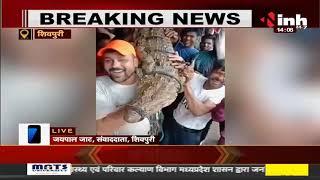 Madhya Pradesh News || Shivpuri में भारी बारिश के बीच युवाओं ने किया मगरमच्छ का रेस्क्यू