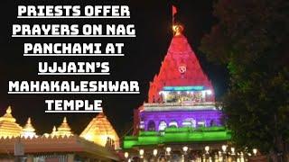 Priests Offer Prayers On Nag Panchami At Ujjain's Mahakaleshwar Temple | Catch News