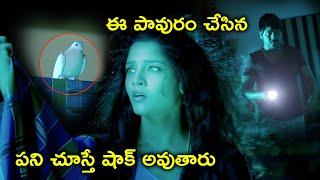 పావురం చేసిన పని చూస్తే | Raghava Lawrence Rithika Singh Latest Movie Scenes