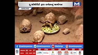 Ahmedabad : કાંકરિયા ખાતે સૂરજ કાચબા અંગે માહિતી અપાશે