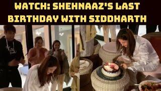 Watch: Shehnaaz's Last Birthday With Siddharth | Catch News