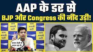 BJP को कड़ी टक्कर दे रही AAP, Congress तो वैसे ही खत्म हो चुकी है - Raghav Chadha