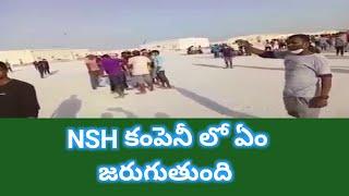 Saudi Based Company Nsh Bahrain Workers | social media live