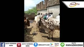 ಅಕ್ರಮವಾಗಿ ಗೋ ಮಾಂಸ ಮಾರಾಟ ಮಾಡುತ್ತಿರುವ 6ಜನ ಆರೋಪಿಗಳನ್ನು ಬಂದಿಸಿರುವ ಘಟನೆ ಬೀದರ್ ಜಿಲ್ಲೆಯ ಔರಾದ ಪಟ್ಟಣದ ನಡೆದಿದೆ