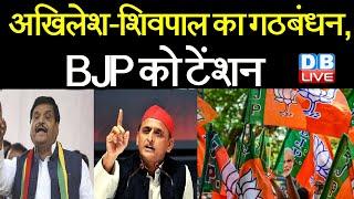 Akhilesh Yadav -Shivpal Yadav का गठबंधन, BJP को टेंशन | गठबंधन पर Akhilesh Yadav ने दिया बयान |