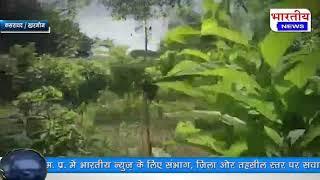 कसरावद : 48 से अधिक प्रजातियों के फलदार व औषधीय पौधे लहलहा रहे हैं। #bn #bhartiyanews #kasrawad