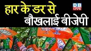 हार के डर बौखलाई BJP    Mamata Banerjee के खिलाफ उतारी नेताओं की फौज   West Bengal News  #DBLIVE
