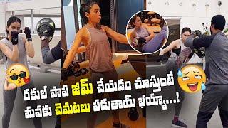 Actress Rakul Preet Singh Fitness Training at Home | Rakul Preet Singh Gym Workout - Top Telugu TV
