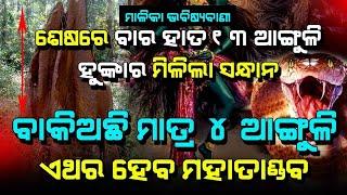 12 Hata 13 Finger Hunka of Malika   Malika Future Prediction   @Satya Bhanja