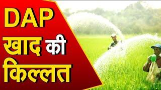 DAP खाद की कमी से किसान परेशान, खाद की किल्लत से हुई बुवाई में देरी