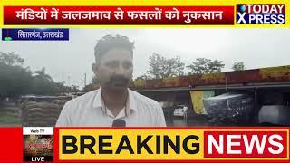 UttaraKhandNews || मौसम विभाग की भविष्यवाणी हुई सही साबित, किसानों के चेहरे पर मायूसी ||Today Xpress