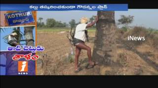 Toddy Man Locks To Palm Tree In Kothur | Warangal | iNews